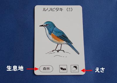 鳥カードの生息地