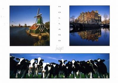 牛と風車がシンボルマークだそうです