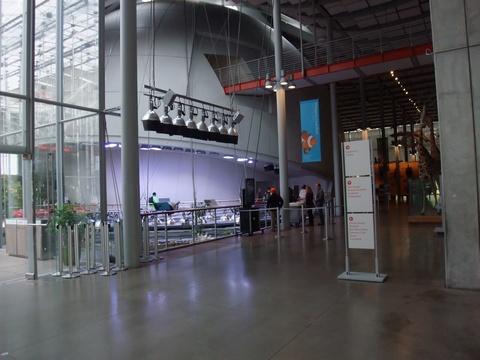 Morrison Planetarium1