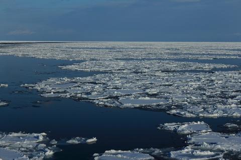 増えてきた流氷