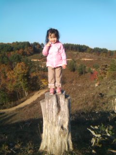 木の上の娘