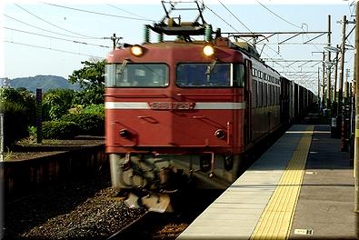 EF81729