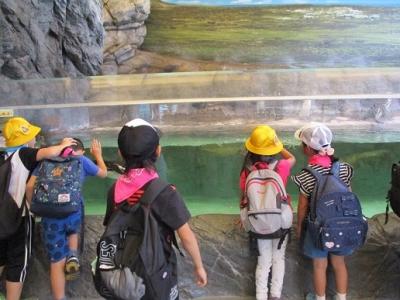 水族館IMG_0031.jpg