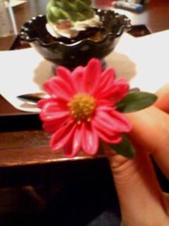 ◎かわいーピンクのお花◎