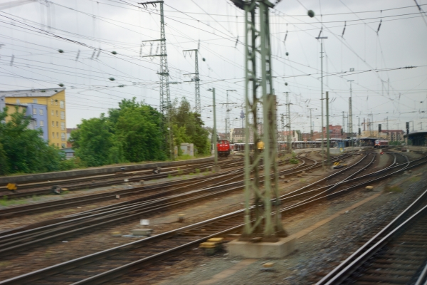 DSC01375.jpg