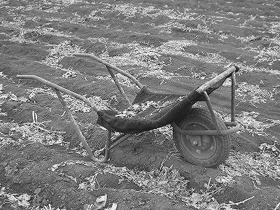 時には畑作業も