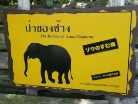 天王寺動物園の象の森