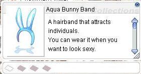 20150701 Aqua Bunny Band