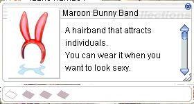 20150701 Maroon Bunny Band