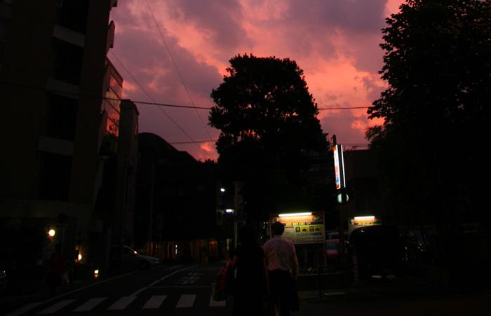 20070817sunset@新宿御苑