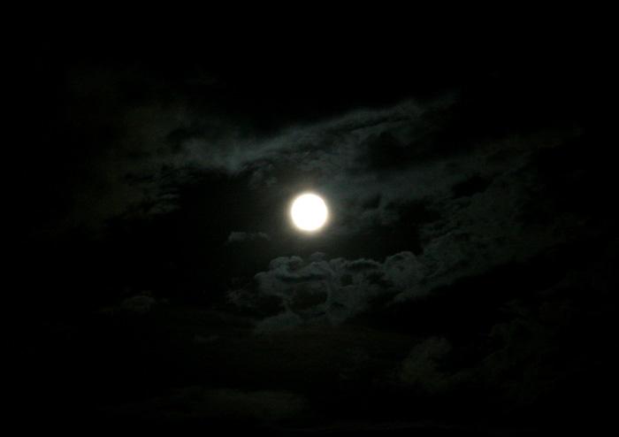 20080816満月@三島クレマチスの丘