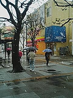 041229_1026~01.jpg