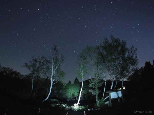 しろ池の夜空