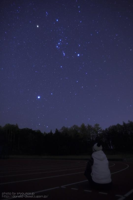 星空観察スタイル