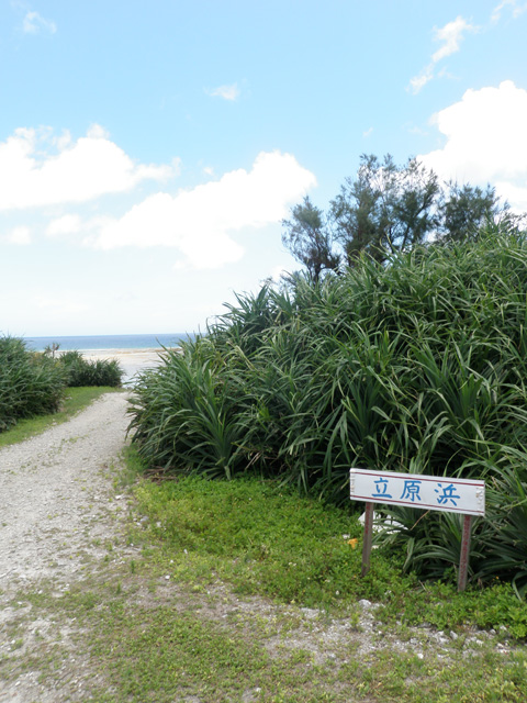 立原浜2.jpg