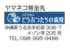 寄付金報告2.jpg