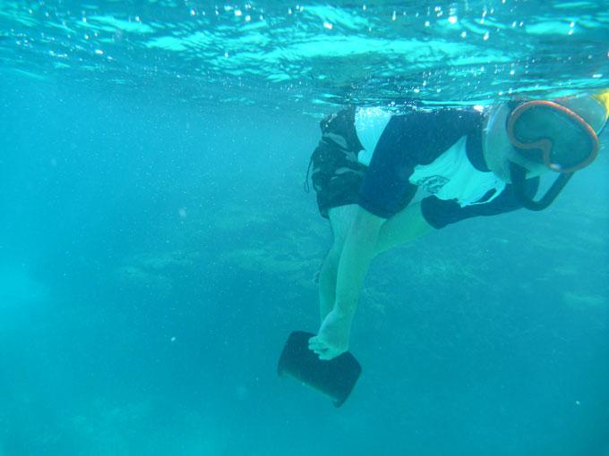 午前水泳3.jpg