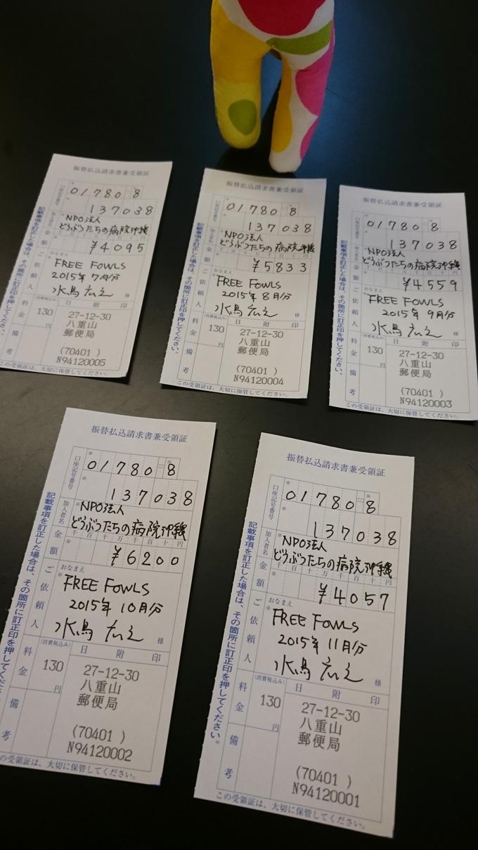 ヤマネコボキン1.jpg