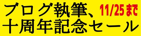 十周年記念セールバナー.jpg