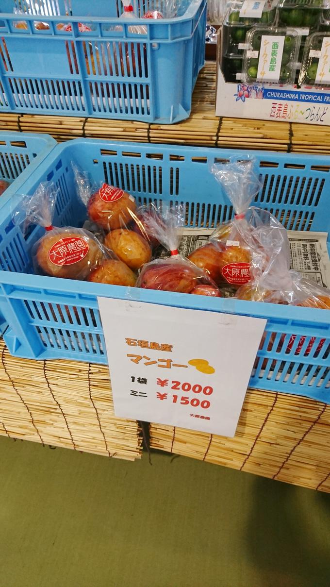 豊作マンゴー3.jpg