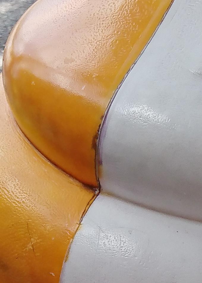 マンゴー味か9.jpg
