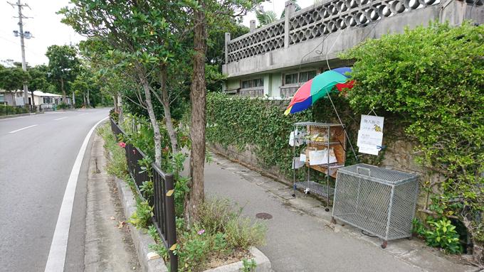 無人バナナ5.jpg