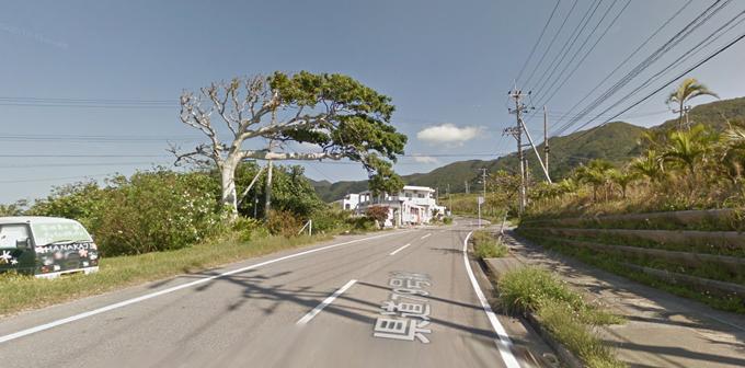 首くくりの木0.jpg