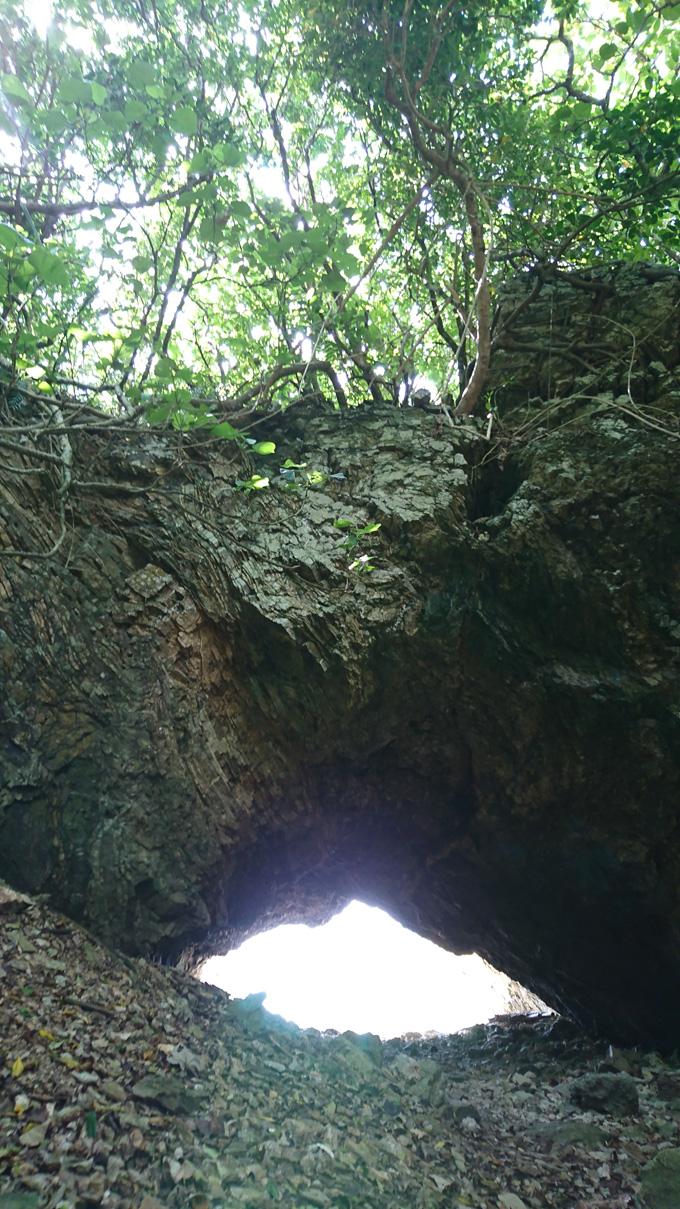 洞窟1.jpg