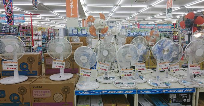 扇風機売り場1.jpg