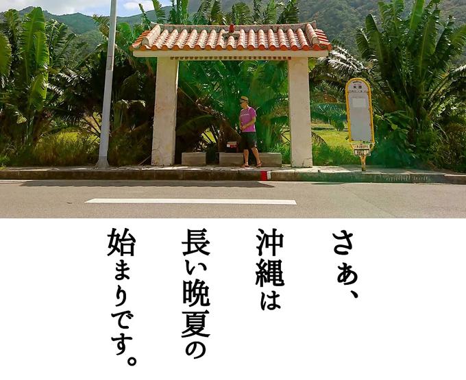 秋突入3.jpg