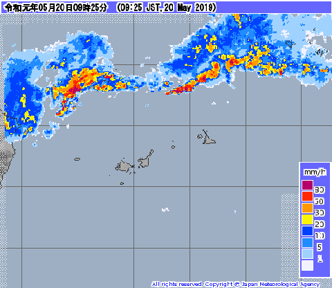 梅雨明けしてるっぽい3.jpg
