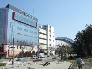 東京国際水泳場