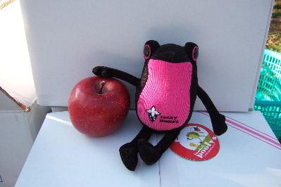 りんごを自慢する黒いちごちゃん