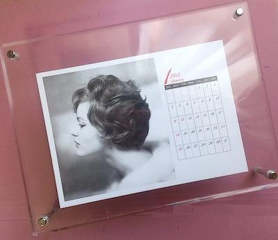 ロミーカレンダー2015