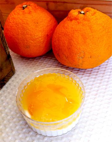 柑橘スイーツレシピ
