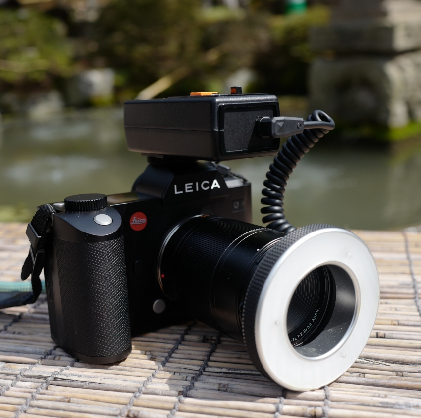 Leica SL, dental.macro,ring,flash