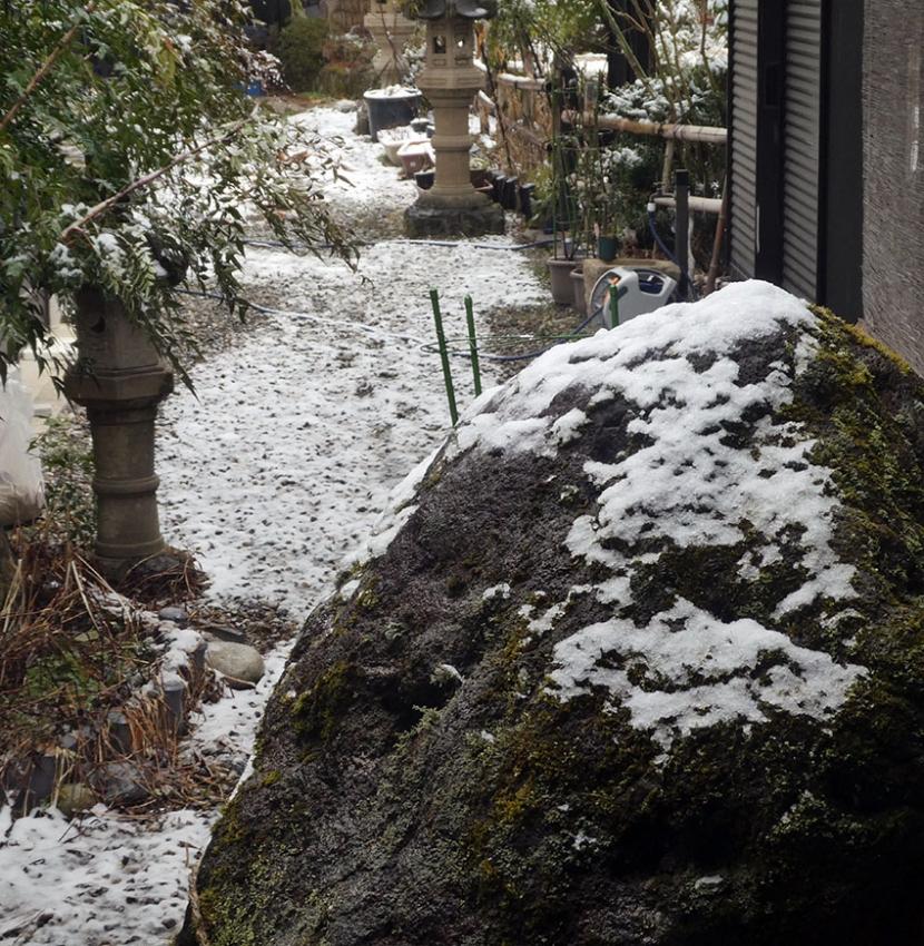 れいわ,雪,氷河期,冷話
