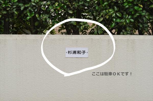 DSC_7489 (2)_LI.jpg