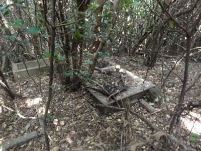 大崎山砲台1