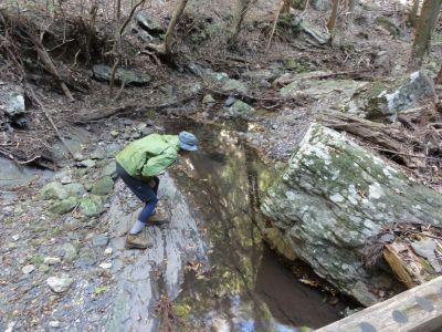 渓流でカニ探し