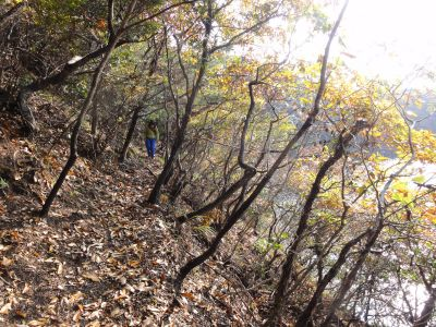 温江砲台への道