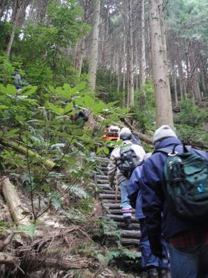 登山道(急階段)