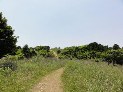 有明登山道3