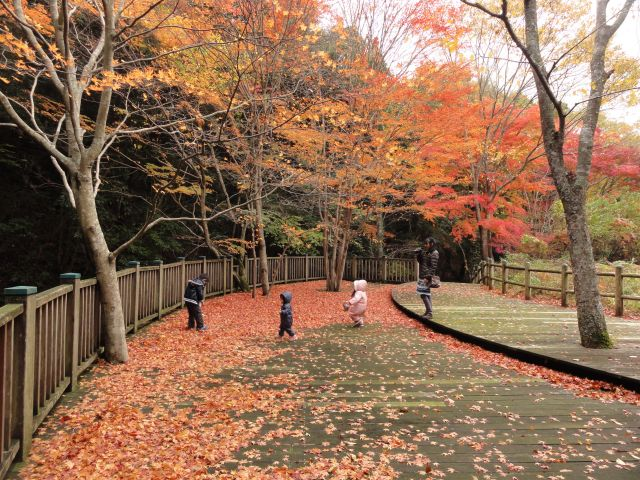松原自然公園2