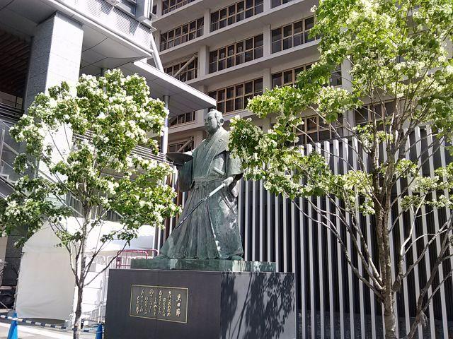 博多駅・ヒトツバタゴ