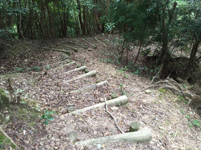 平岳登山口近くの登山道