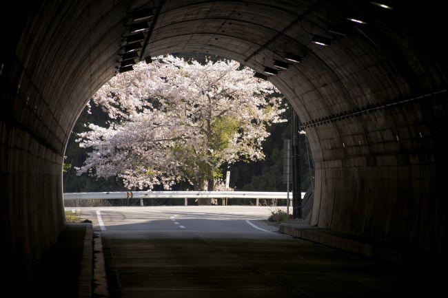 トンネル前01_small650.jpg
