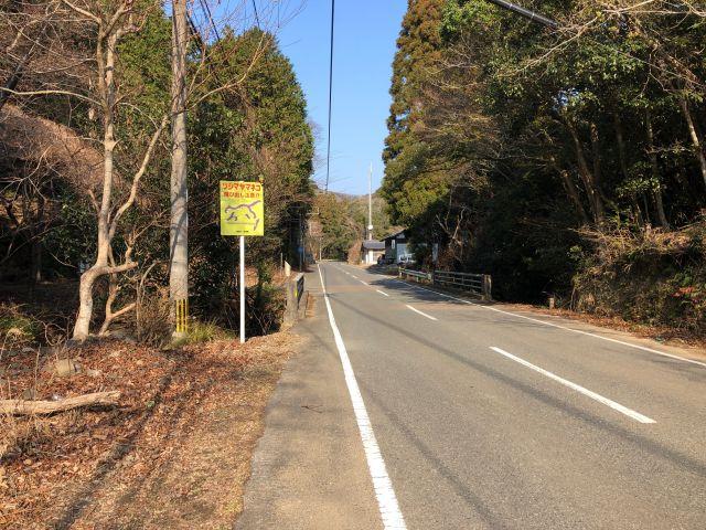 国道382号・ヤマネコ看板