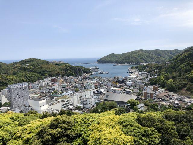 清水山の新緑
