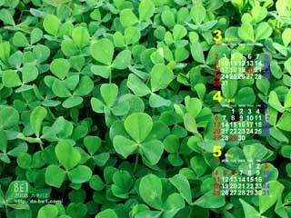 「デザインスタジオ・ビーワンの壁紙カレンダー」へGO!